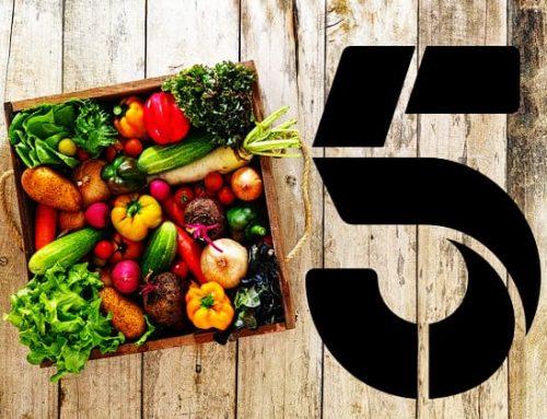 5 żelaznych zasad zdrowiejącej Wilczycy