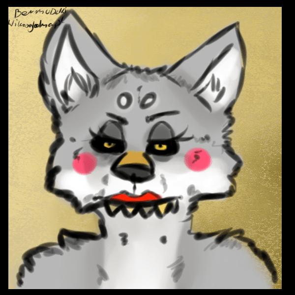 wilcza suka