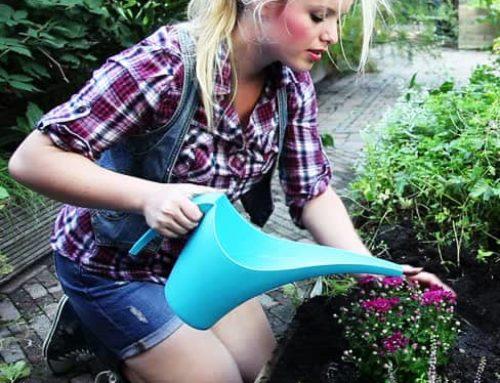 Lekcje ogrodnictwa